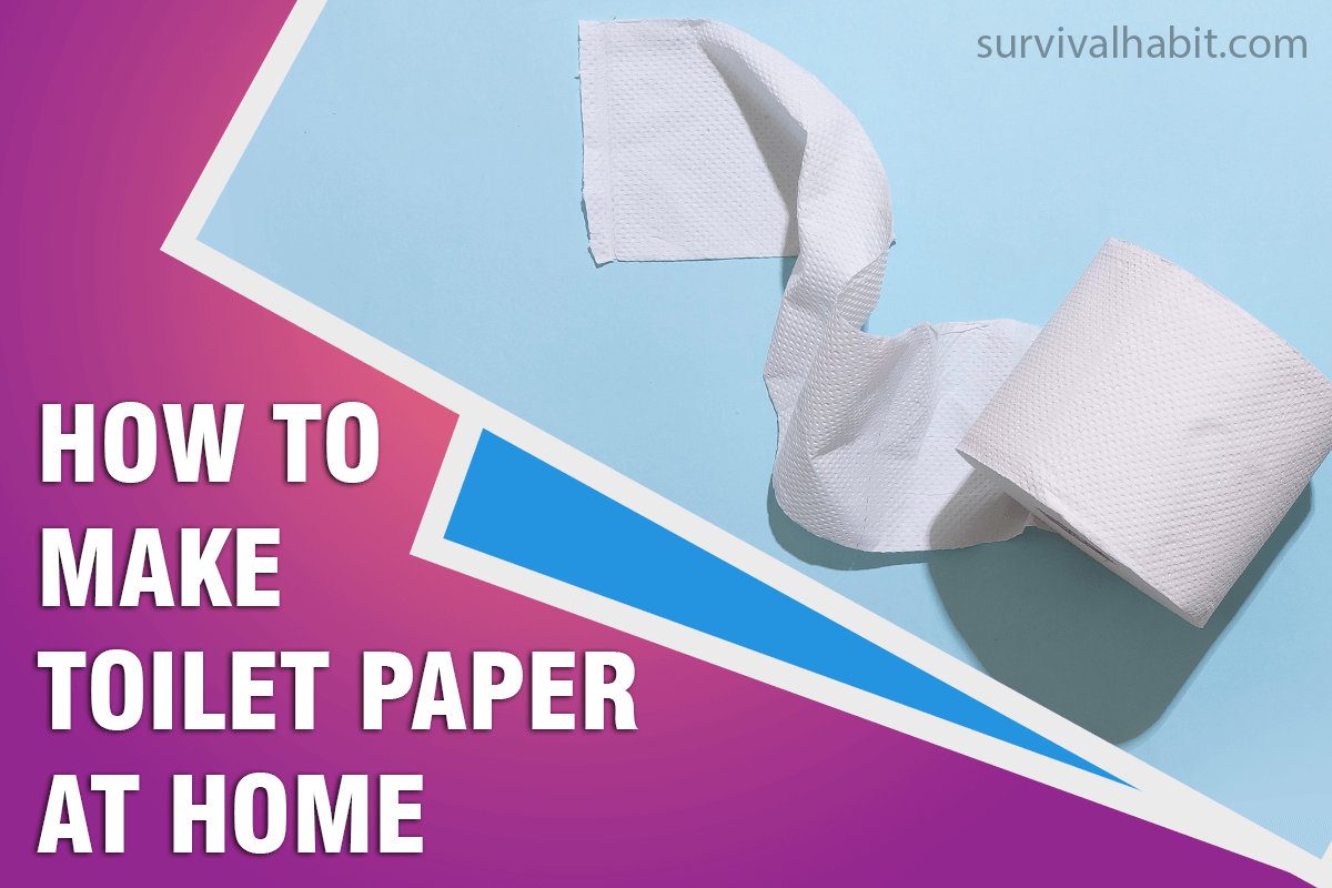 how-to-make-toilet-paper-at-home